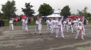 Luton Karate Demo